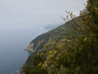 Cape of Mesco - Levanto