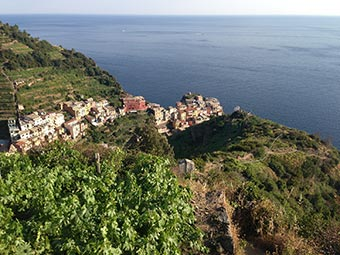 Manarola - Panoramic View - Sendero 6